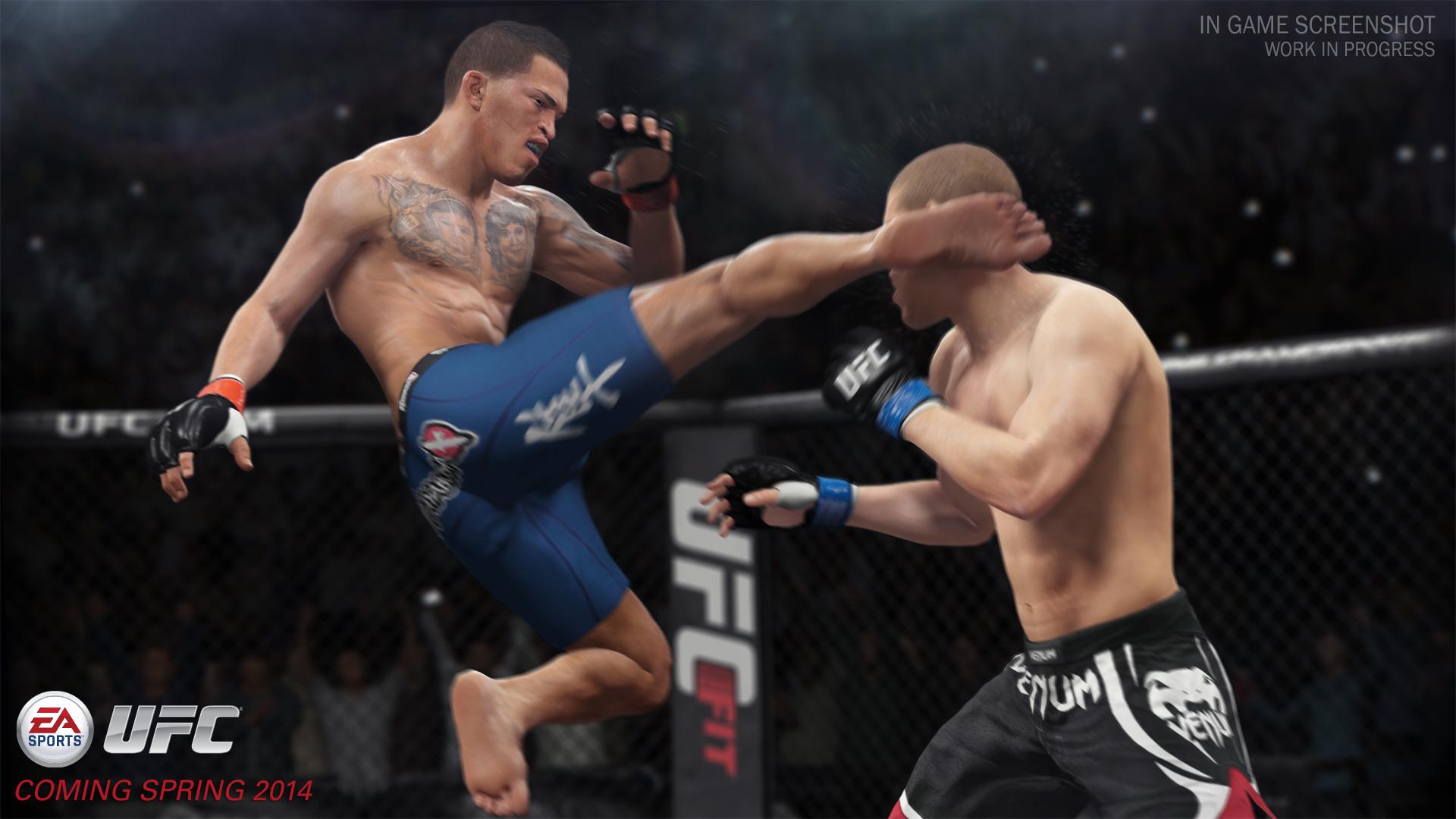 http://playsense.nl/wp-content/uploads/2014/02/EA-Sports-UFC-01.jpg